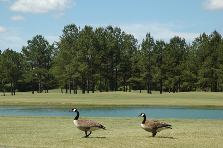 Oxbow Creek Golf Course