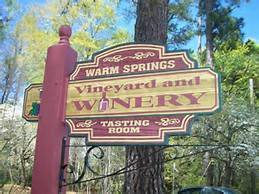 Warm Springs Vineyard and Winery