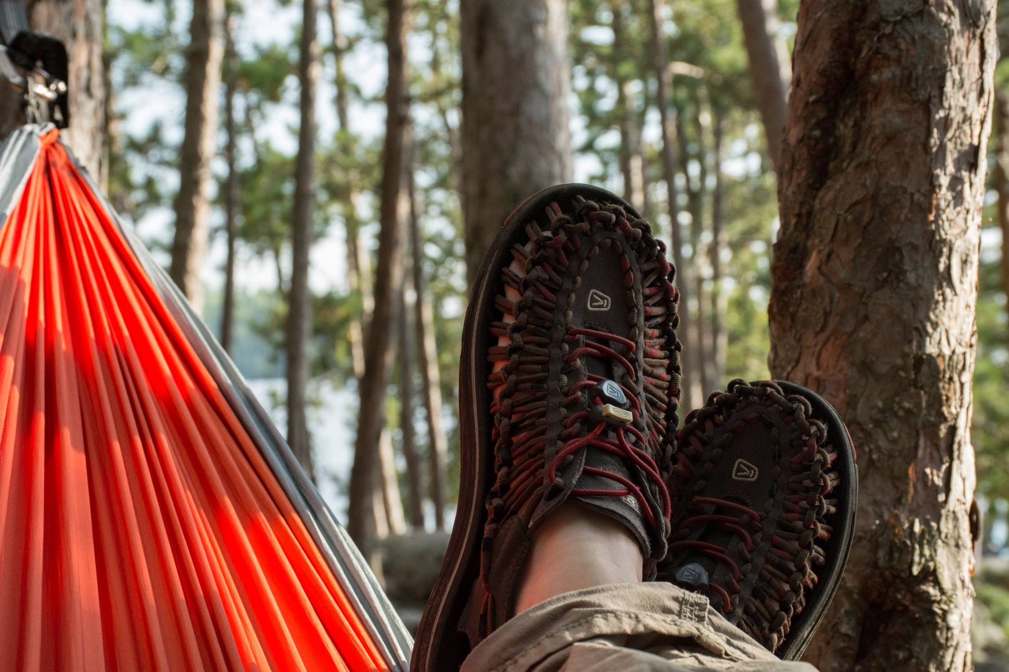 FALL CLINIC SERIES - HAMMOCK CAMPING 101