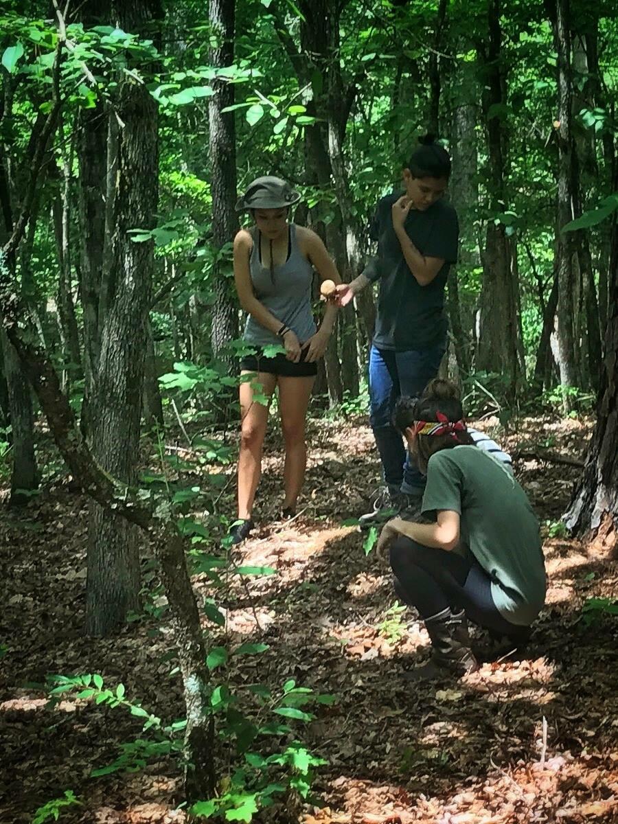 Iron Braid Wilderness Survival Class