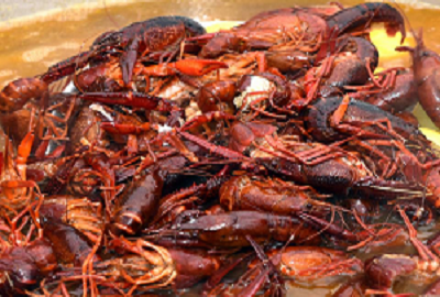 Frogtown Crawfish Festival